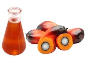 Пальмовое масло оптом купить